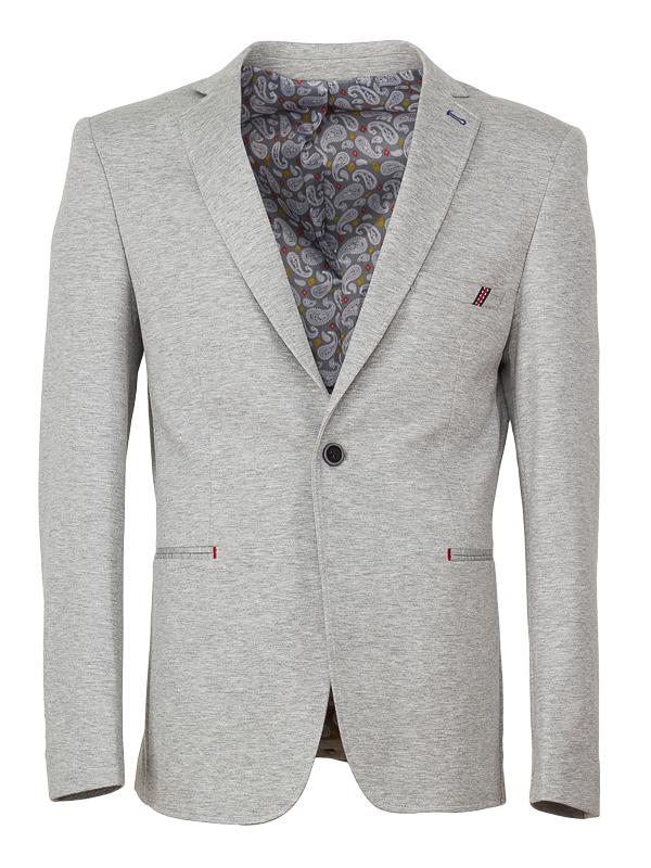 Светло-серый мужской пиджак Rvvaldi rj-2019-67 в интернет магазине ... efeb2750cca